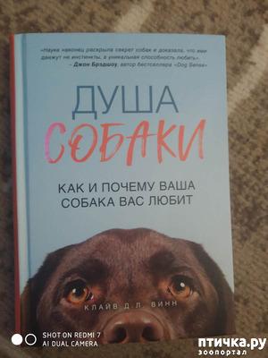 "фото: Клайв Д. Л. Винн ""Душа собаки. Как и почему ваша собака вас любит"""