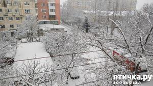 фото: Вид из окна