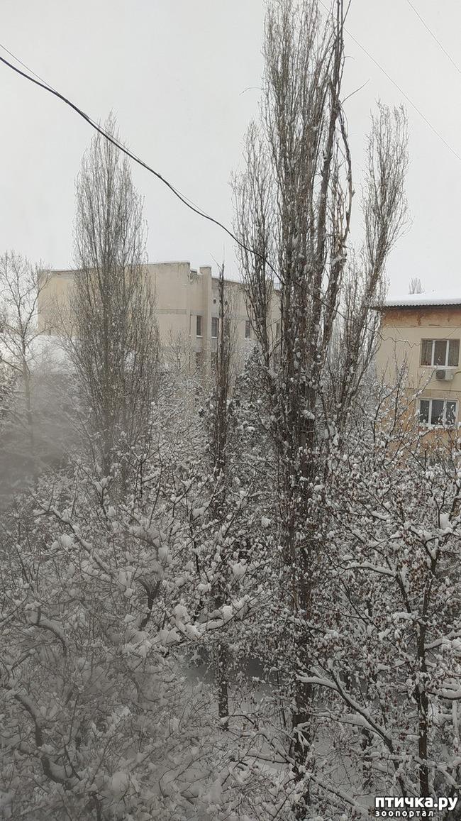 фото 2: Вид из окна