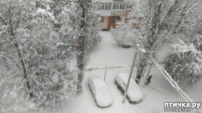 фото 3: Вид из окна