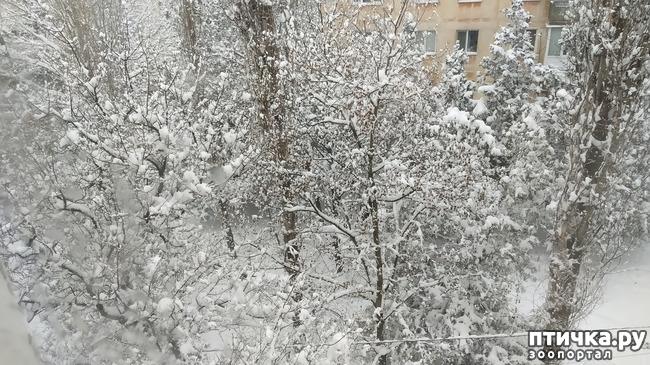 фото 5: Вид из окна