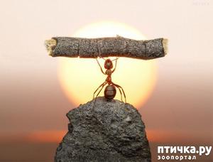 фото: Вот что значит верить в себя и свои силы!