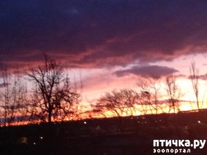 фото: Первое новое утро Нового года началось, как и желала, с позитива.