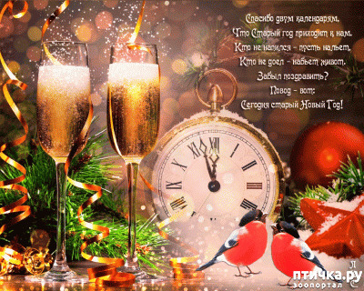 фото 4: Со Старым Новым годом!