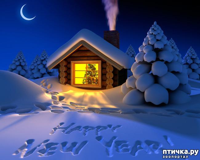 фото 6: Со Старым Новым годом!