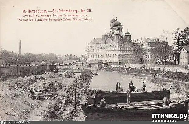 фото 2: Иоанновский монастырь