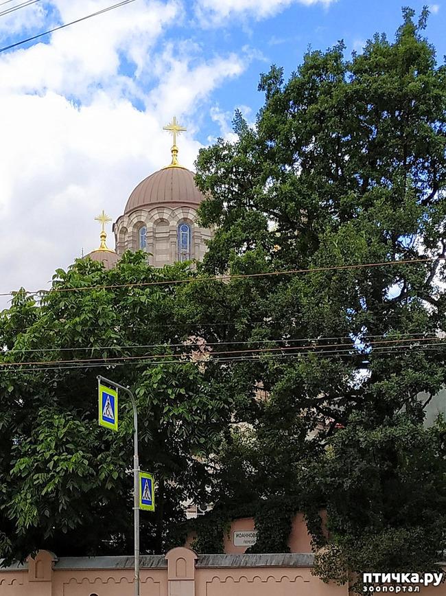 фото 5: Иоанновский монастырь
