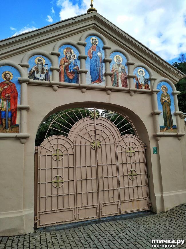 фото 9: Иоанновский монастырь
