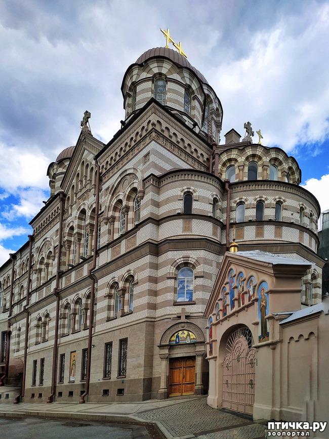 фото 8: Иоанновский монастырь