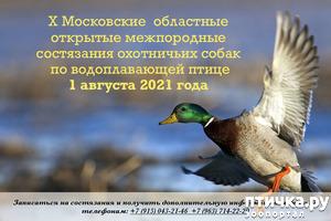 фото: Состязания по водоплавающей птице