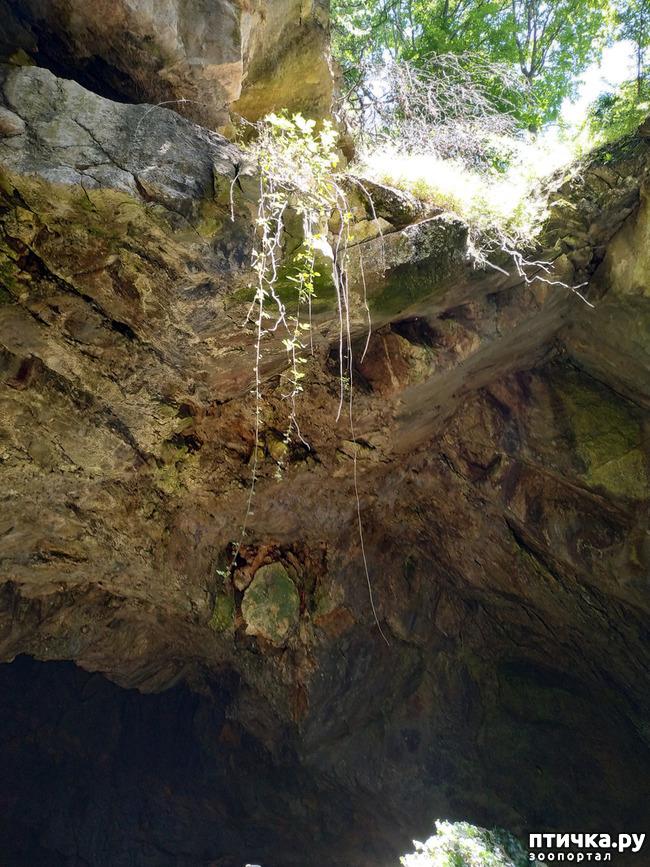 фото 3: Пещеры