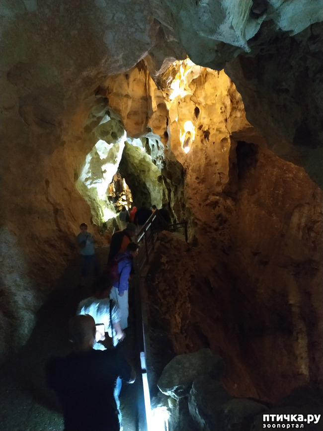 фото 9: Пещеры