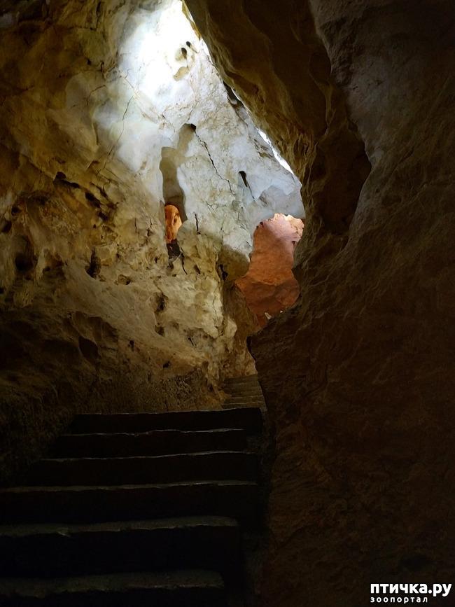 фото 7: Пещеры