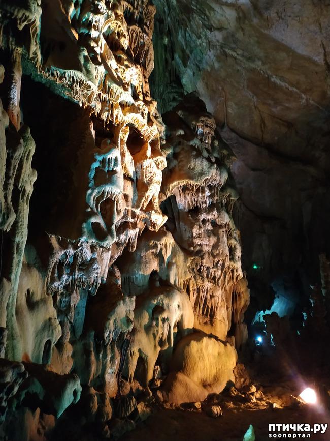 фото 10: Пещеры