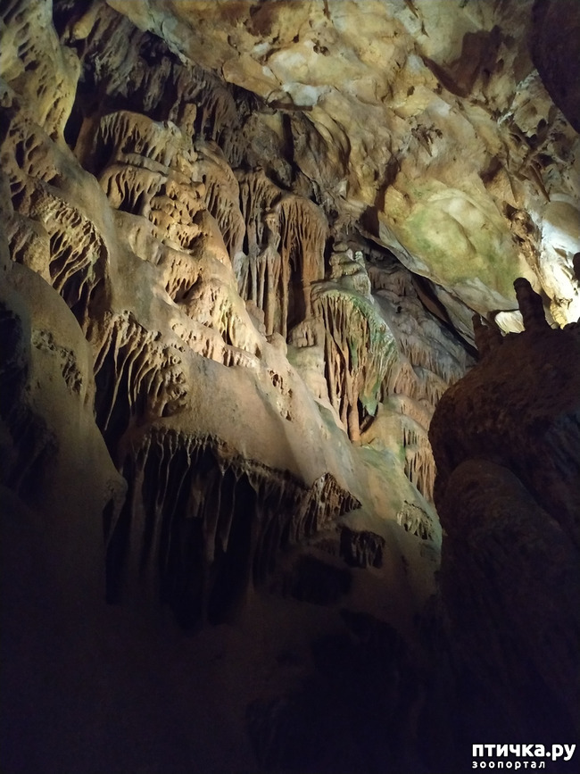 фото 19: Пещеры