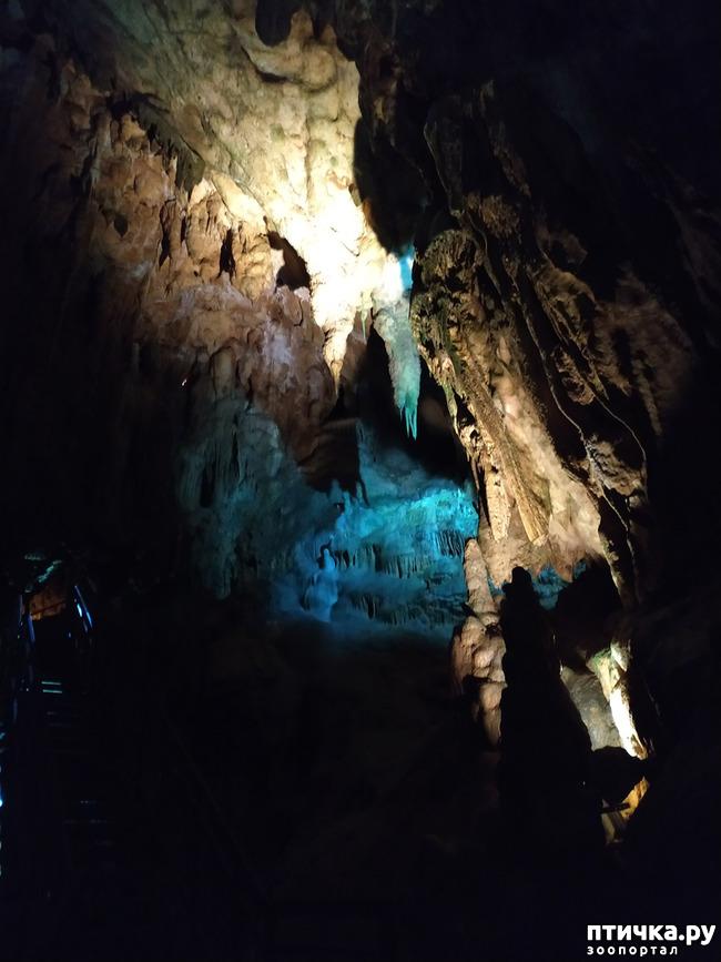 фото 23: Пещеры
