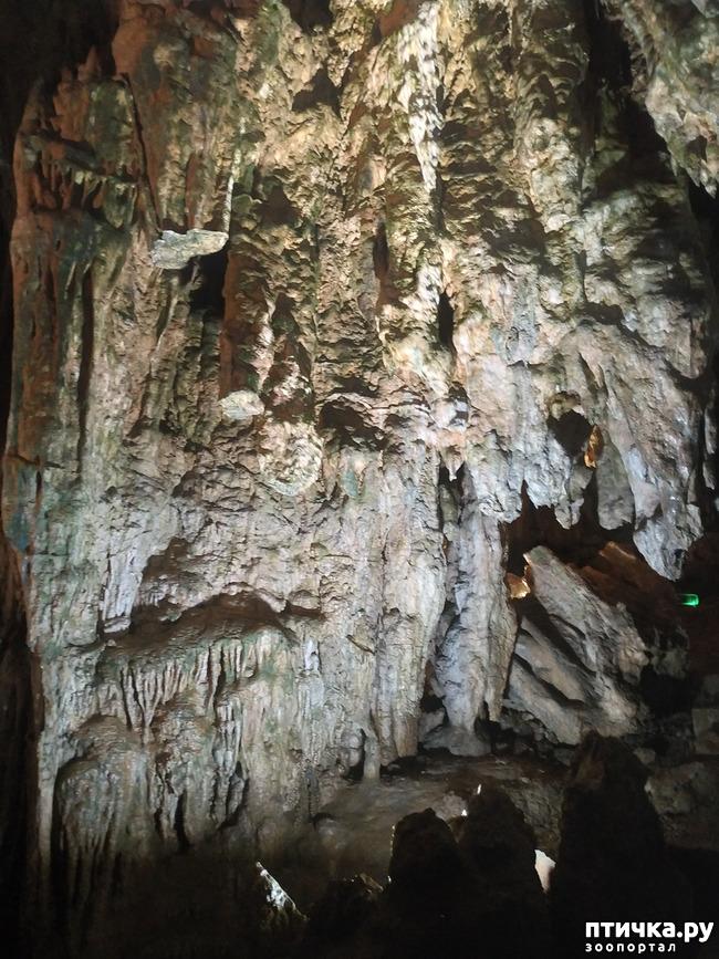 фото 25: Пещеры