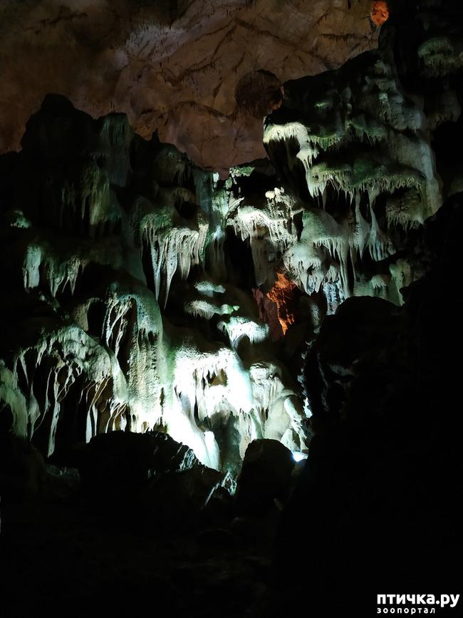 фото 29: Пещеры
