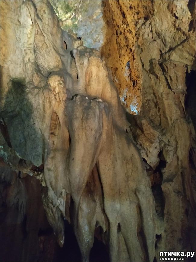 фото 33: Пещеры