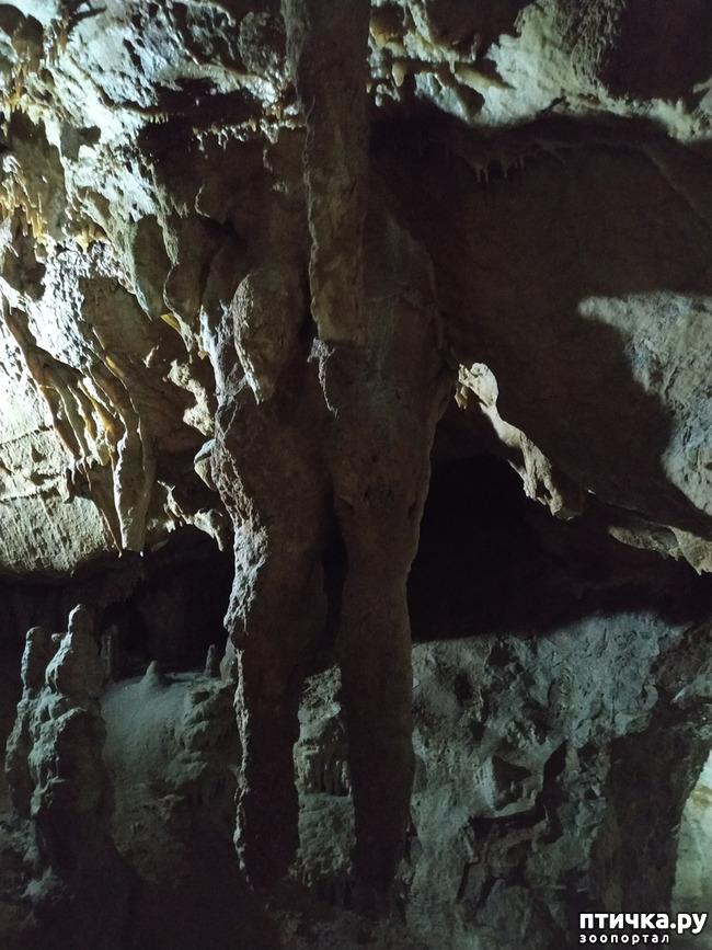 фото 39: Пещеры