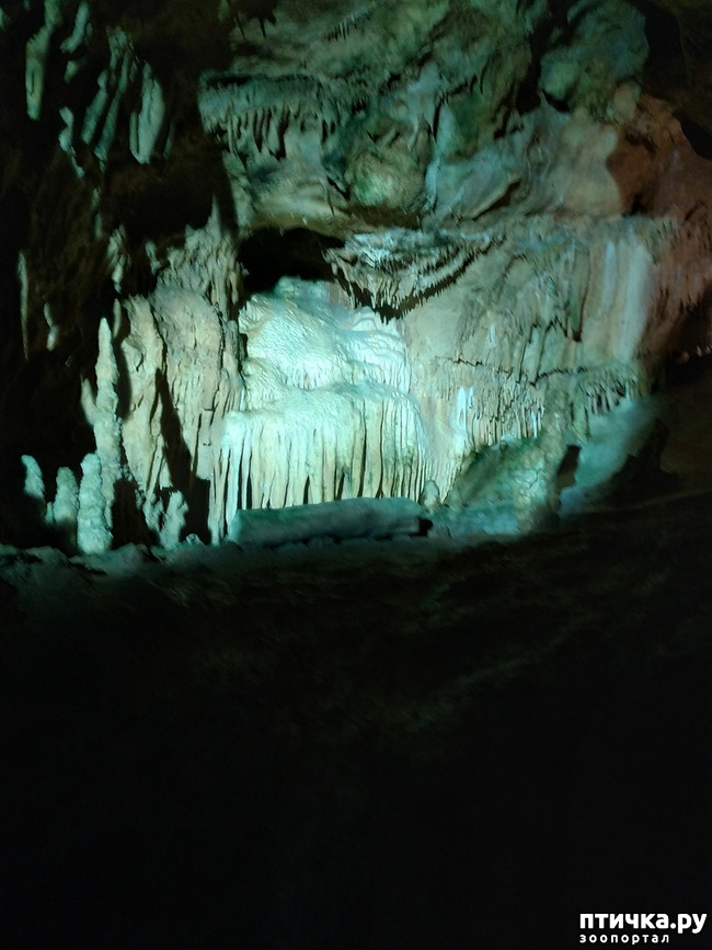 фото 42: Пещеры