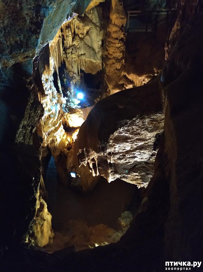 фото 45: Пещеры