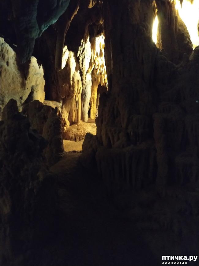 фото 47: Пещеры