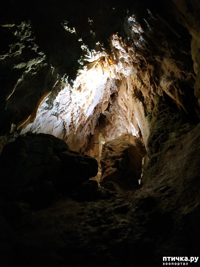 фото 46: Пещеры