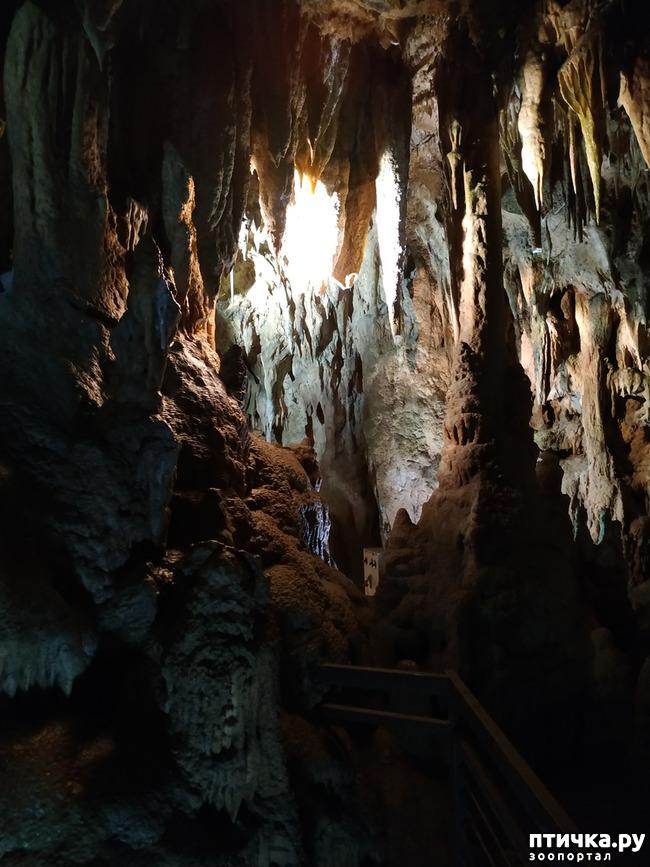 фото 48: Пещеры