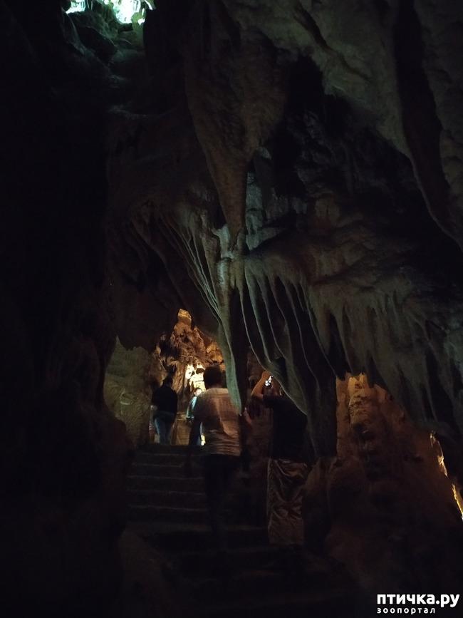 фото 49: Пещеры