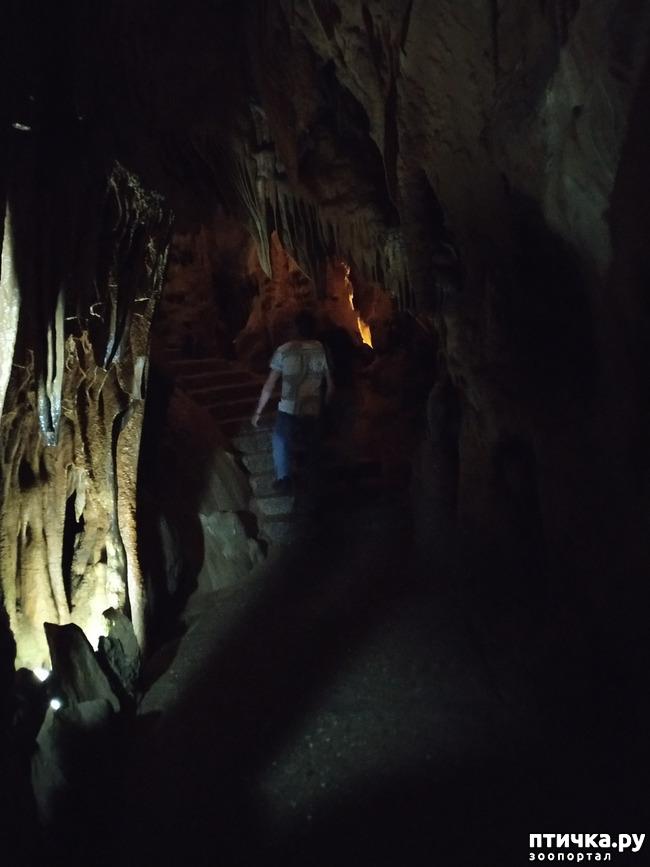 фото 50: Пещеры