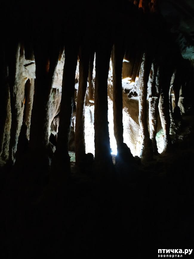 фото 57: Пещеры
