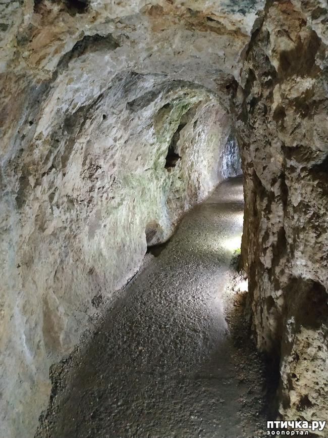 фото 52: Пещеры