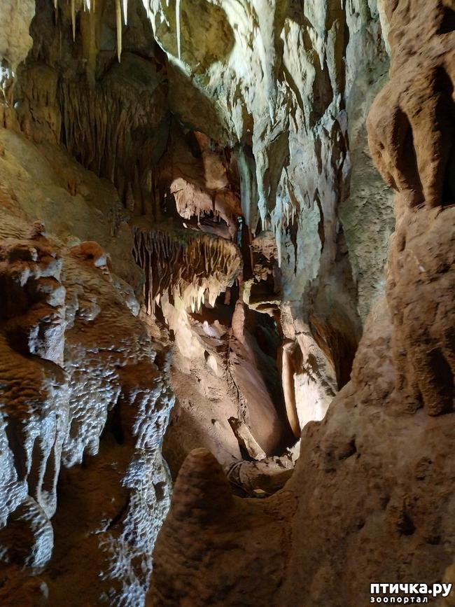 фото 54: Пещеры