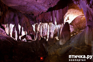 фото: Пещера Мраморная