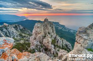 фото: Западный Крым