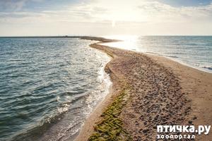 фото: Западный Крым (продолжение)
