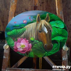 фото: Лошадь в моем творчестве.