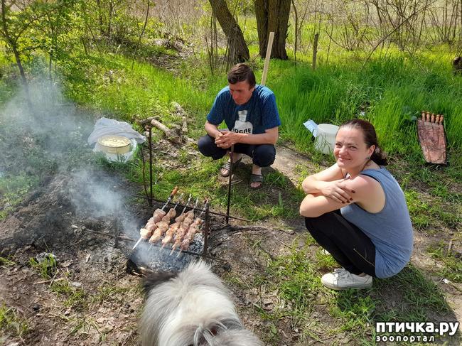 фото 14: Как мы отдыхали на природе