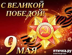 фото: С днем Победы!