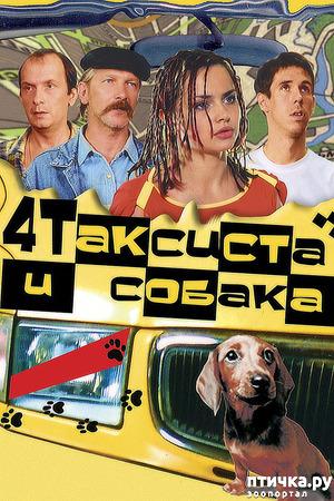 фото: Четыре таксиста и собака. как всё начиналось