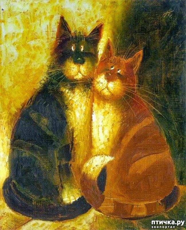 фото 24: Котики от Люси и Галины