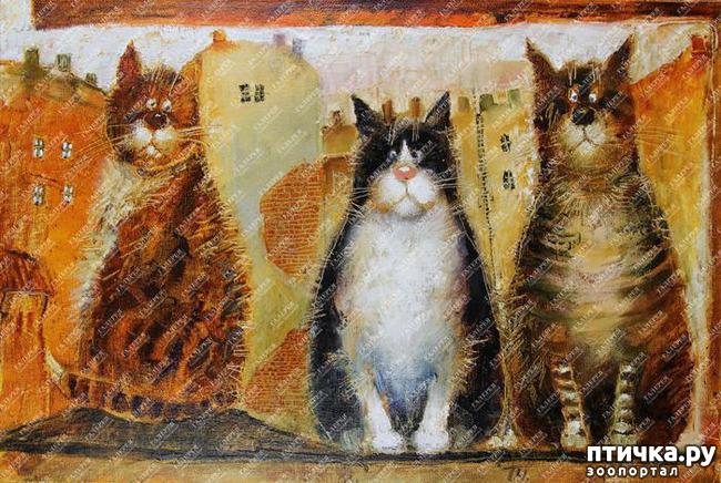 фото 1: Котики от Люси и Галины