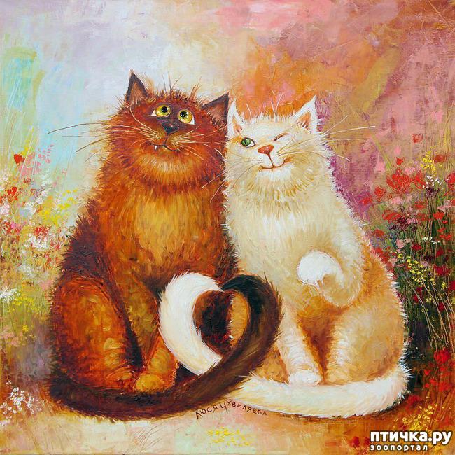 фото 3: Котики от Люси и Галины