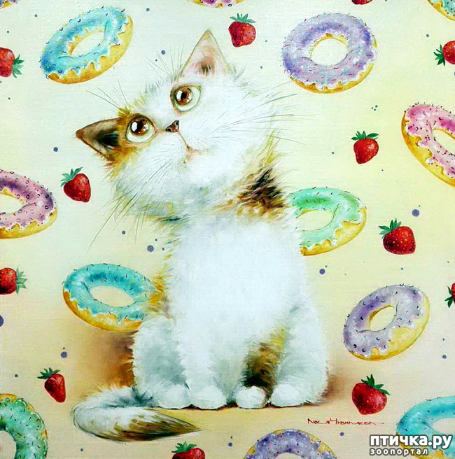 фото 4: Котики от Люси и Галины