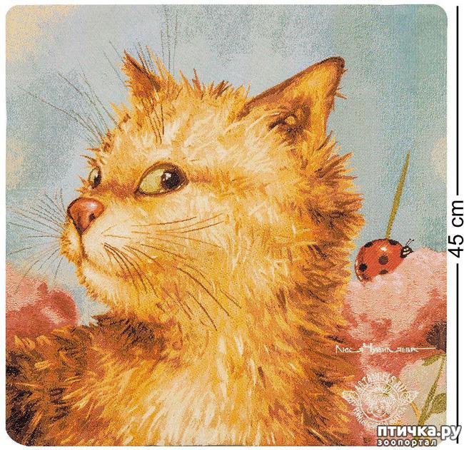 фото 5: Котики от Люси и Галины