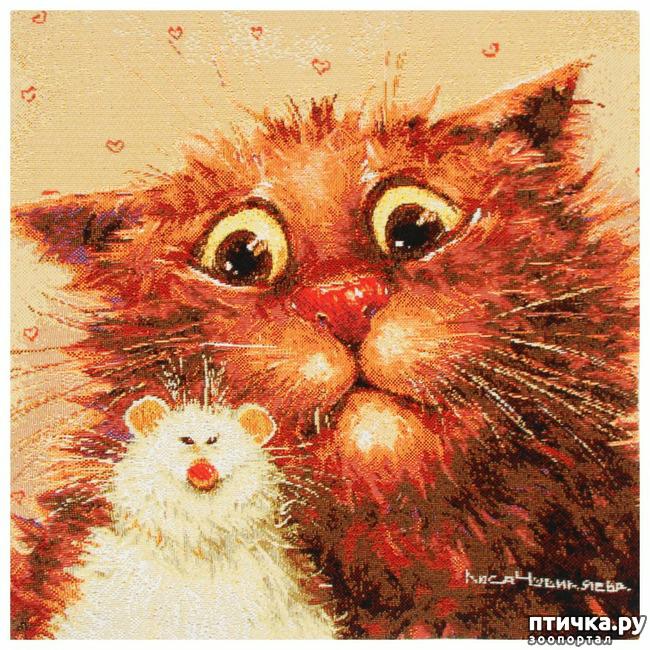 фото 10: Котики от Люси и Галины