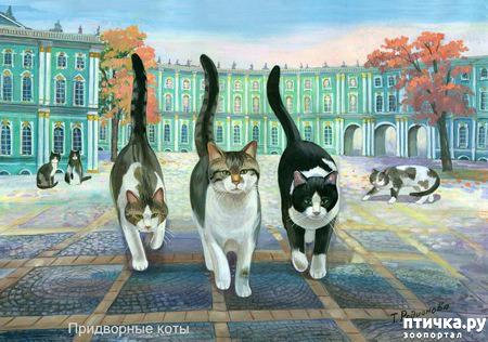 фото 3: Котики Татьяны Родионовой