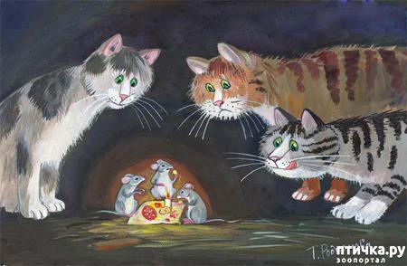 фото 10: Котики Татьяны Родионовой