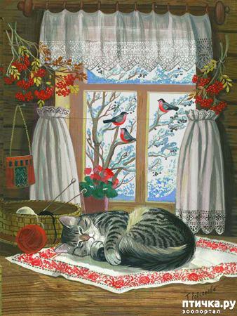 фото 14: Котики Татьяны Родионовой